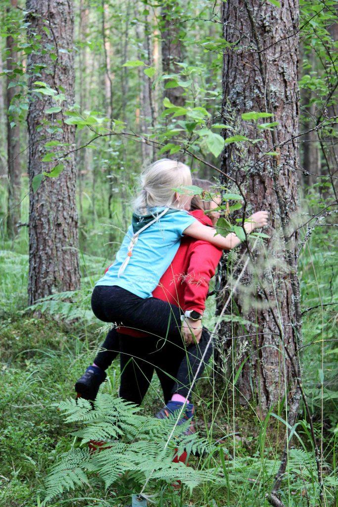 Yhteistyöllä köytökset saa ylemmäs puuhun!